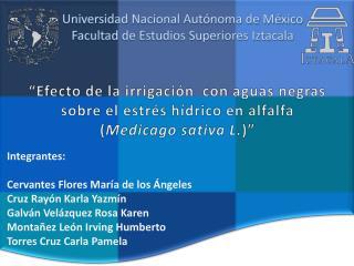 Universidad Nacional Autónoma de México Facultad de Estudios Superiores Iztacala