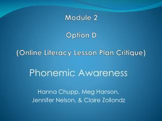 Module 2 Option D (Online Literacy Lesson Plan Critique)