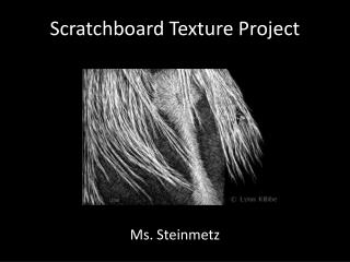 Scratchboard Texture Project