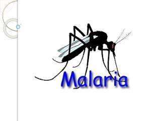 Malária Doença  infecciosa potencialmente  grave: Causada por protozoários do gênero  Plasmodium