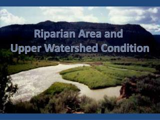 Riparian Area and  Upper Watershed Condition