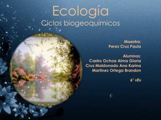 Ecolog�a Ciclos biogeoqu�micos
