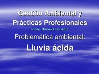 Gestión Ambiental y Prácticas Profesionales Profa .  Ninoska Donadio Problemática ambiental: