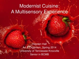 Modernist Cuisine:  A Multisensory Experience