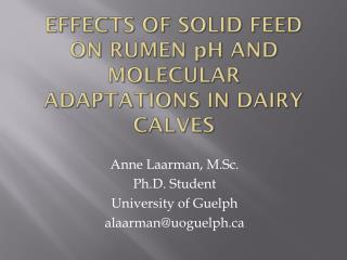 Effects of Solid Feed on Rumen  p H and Molecular Adaptations in Dairy Calves