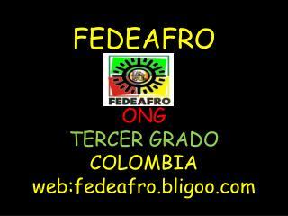 FEDEAFRO ONG TERCER GRADO COLOMBIA web:fedeafro.bligoo
