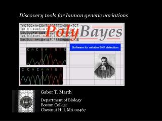 Human Genetic Variations