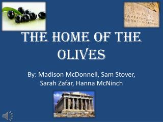 The Home Of the Olives