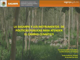 LA SAGARPA Y LOS INSTRUMENTOS   DE  POLÍTICAS PUBLICAS PARA ATENDER  EL CAMBIO CLIMÁTICO