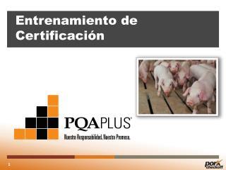 Entrenamiento  de  Certificación