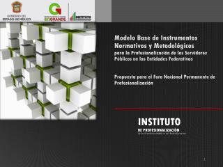 INSTITUTO DE PROFESIONALIZACIÓN de los Servidores Públicos del Poder Ejecutivo