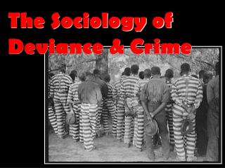 The Sociology of Deviance & Crime