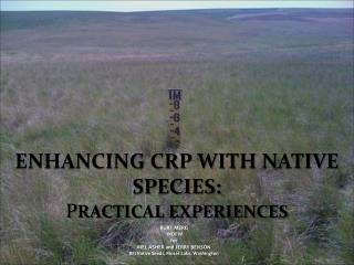 Enhancing CRP With Native Species:  P RACTICAL EXPERIENCES