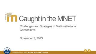 Challenges and Strategies in Multi -Institutional Consortiums November 5, 2013