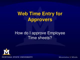 Web Time Entry for Approvers