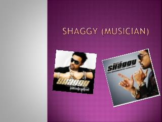 Shaggy (musician)