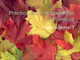 Pr�ctica  con  Interrogativos  y  Pret�rito