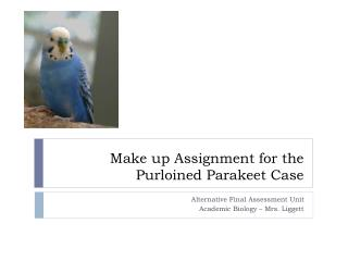 Make up Assignment for the  Purloined Parakeet Case
