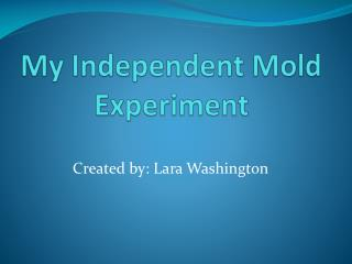 My Independent Mold Experiment