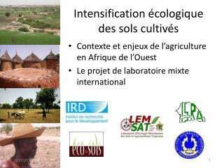Intensification écologique des sols cultivés