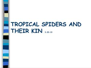 TROPICAL SPIDERS AND THEIR KIN  3-30-10