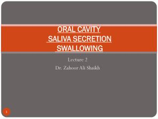 ORAL CAVITY   SALIVA SECRETION  SWALLOWING