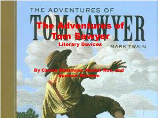The Adventures of  Tom Sawyer Literary Devices