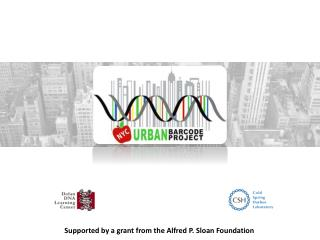 Supported by a grant from the Alfred P. Sloan Foundation
