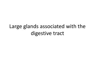 Large glands associated with the digestive tract