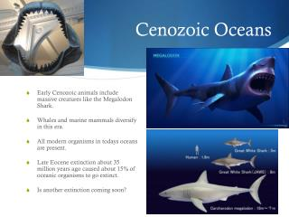Cenozoic Oceans