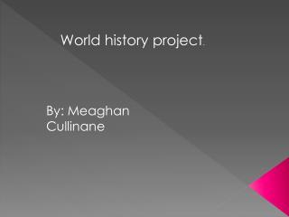 World history project .