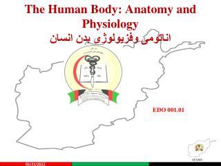 The Human Body: Anatomy and Physiology  اناتومی وفزیولوژی بدن انسان