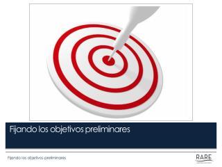 Fijando los objetivos preliminares
