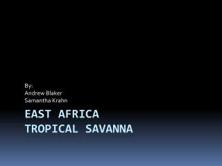 East  africa Tropical Savanna