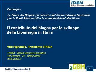 Il  contributo  del biogas per lo  sviluppo della bioenergia  in Italia
