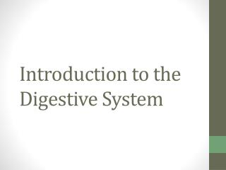 Introduction to the Digestive System