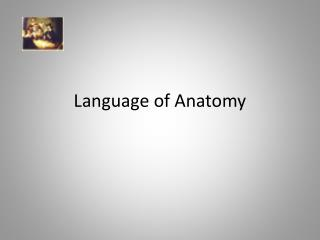 Language of Anatomy