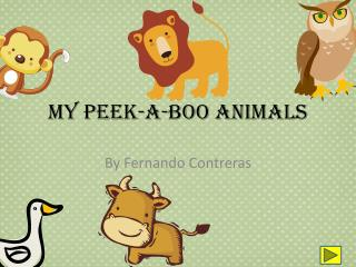 My Peek-A-Boo Animals