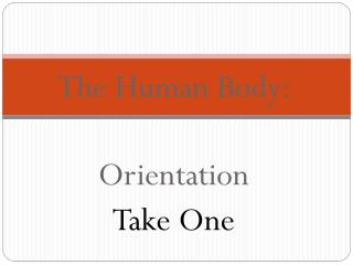 The Human Body:  Orientation Take One