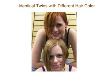 Identical Twins with Different Hair Color
