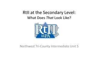 RtII  at the Secondary Level: What Does  That  Look Like?