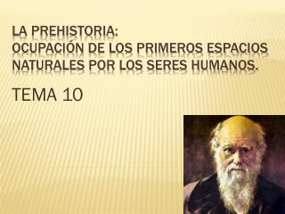 LA PREHISTORIA: OCUPACIÓN DE LOS PRIMEROS ESPACIOS NATURALES POR LOS SERES HUMANOS.