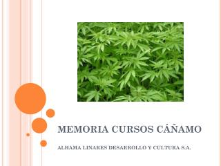 MEMORIA CURSOS CÁÑAMO