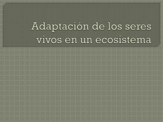Adaptación de los seres vivos en un ecosistema