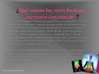 ¿ Qué somos los seres humanos  cuerpos o conciencias ?
