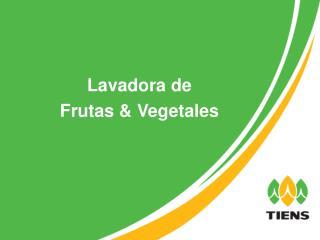 Lavadora de  Frutas & Vegetales