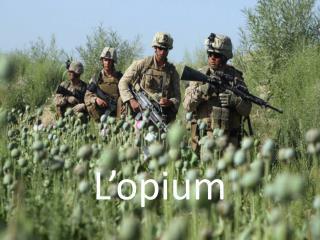 L'opium