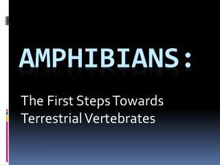 Amphibians: