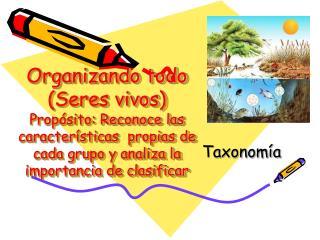 Taxonom�a