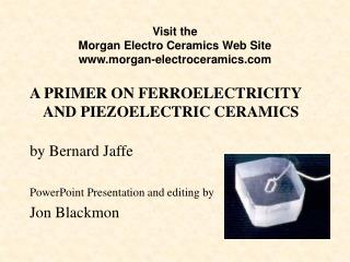 Visit the Morgan Electro Ceramics Web Site morgan-electroceramics